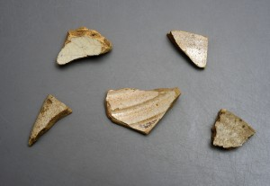 Sherds of Columbia Plain majolica found at the Luna settlement.