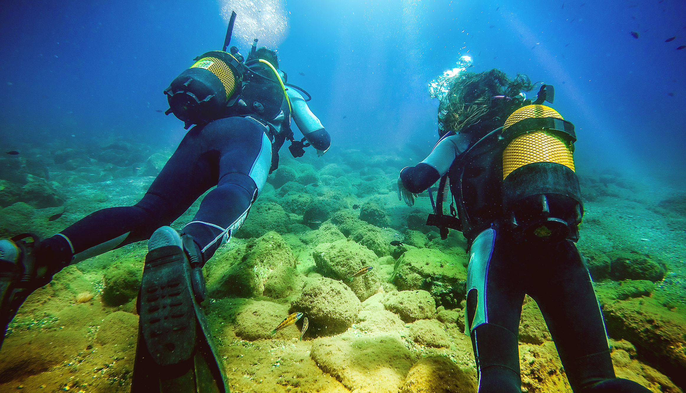 This stock photo displays two scuba divers swimming in the ocean.