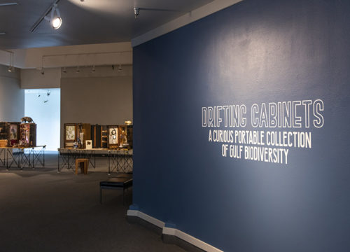 "The Art Gallery (TAG) at UWF presents ""Drifting Cabinets: A Curious Portable Collection of Gulf Biodiversity"""