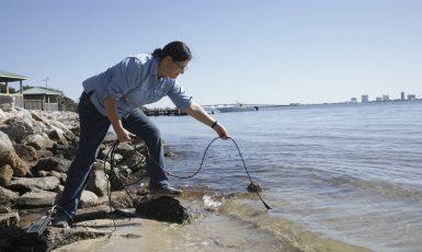 Dr. Jane Caffrey Estuary Research
