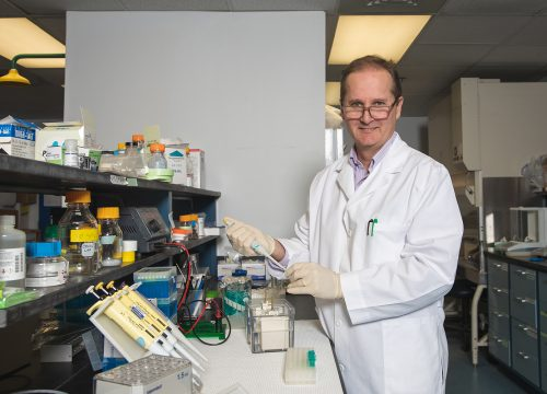 Dr. Rodney Guttmann, professor of biology in the UWF Hal Marcus College of Science and Engineering.