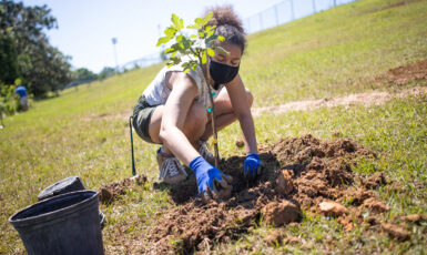 Students and faculty gathered to plant various fruit-bearing trees on the UWF campus as part of the Argos' Edible Campus program on Apr. 25, 2021.
